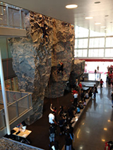 The rock wall at the Student Recreation Center.